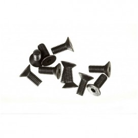 M4x10 F/H CAP SCREW