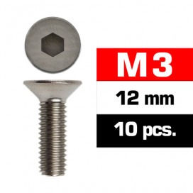 M3x12mm FLAT HEAD SCREWS (10 pcs)