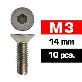 M3x14mm FLAT HEAD SCREWS (10 pcs)