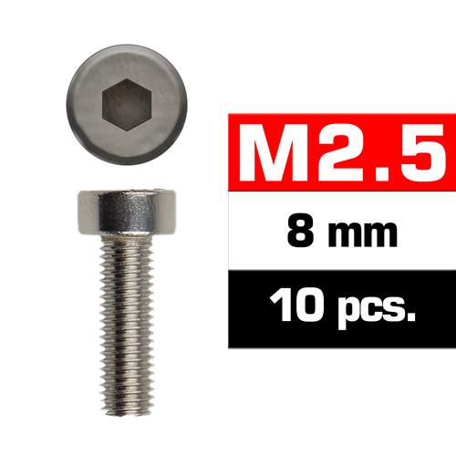 TORNILLOS M2,5x8mm CILINDRICO (10u.)