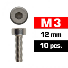 M3x12mm CAP HEAD SCREWS (10 pcs)