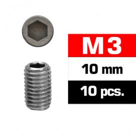M3x10mm SET SCREWS (10 pcs)