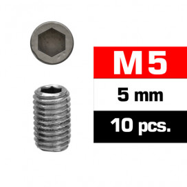 M5x5mm SET SCREWS (10 pcs)